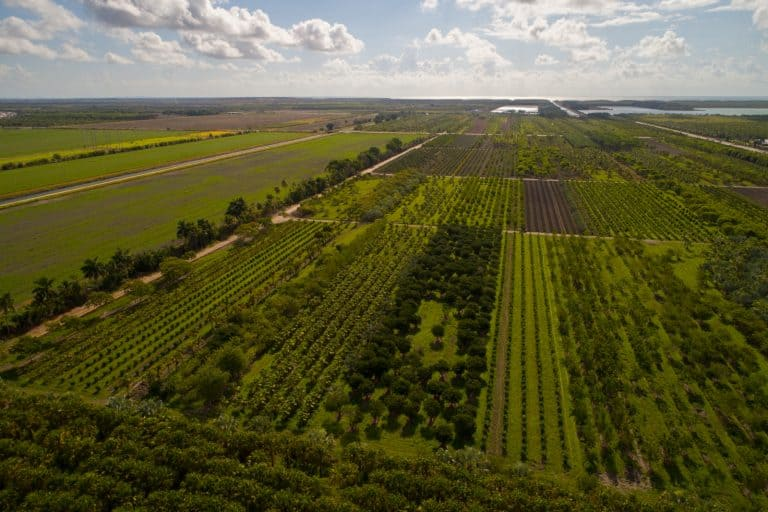 Top Five Factors to Consider When Choosing a Farm Irrigation System in Southwest Florida