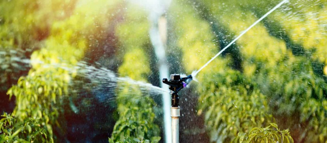 The Basics Of Agricultural Irrigation