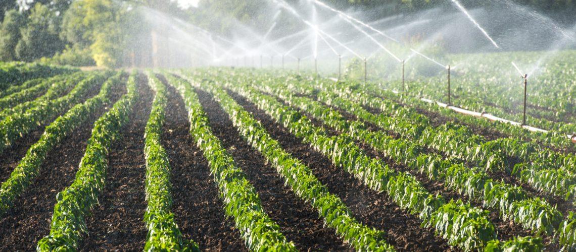 Understanding Agricultural Sprinkler Irrigation Systems